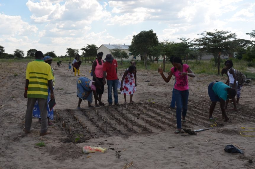 small-scale farming namibia